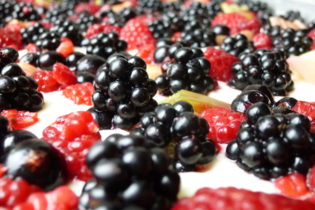 die schwarzen brombeeren werden mit anderen früchten auf dem quarkkuchen plaziert