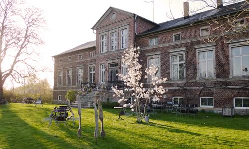 Magnolie mit weißen Blüten vor dem Gutshaus aus rotem Backstein